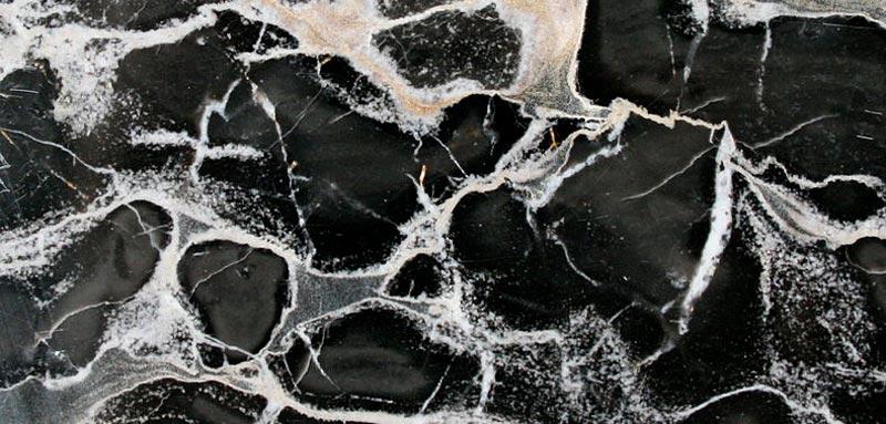 Typologies of Portoro marble